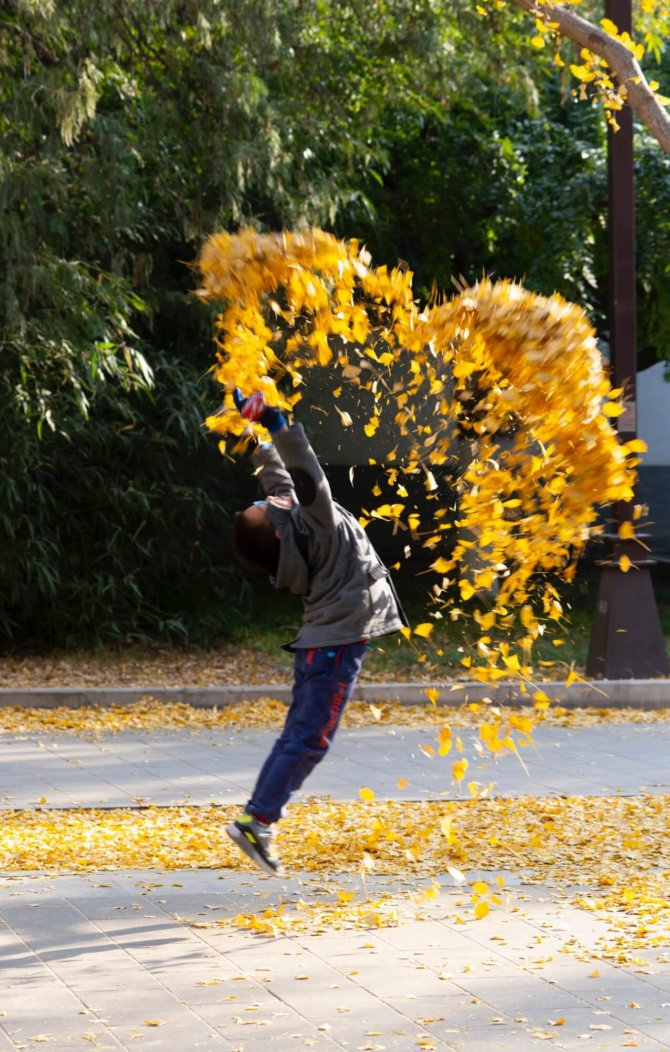 豪撒黄金-地坛公园 Throwing Gold – Ditan Park