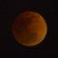 紅月亮 Red Moon